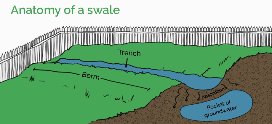 Anatomy of a swale