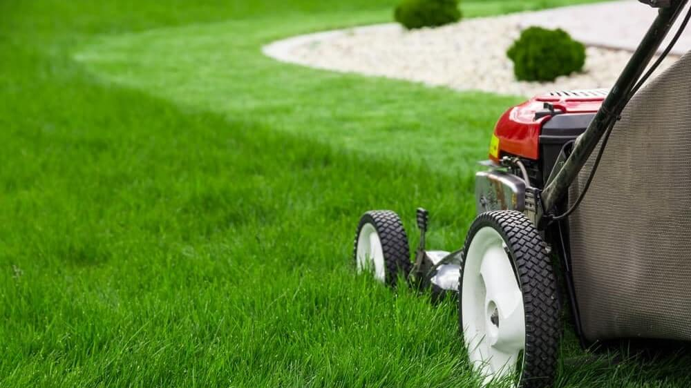 How to mow a lawn the right way