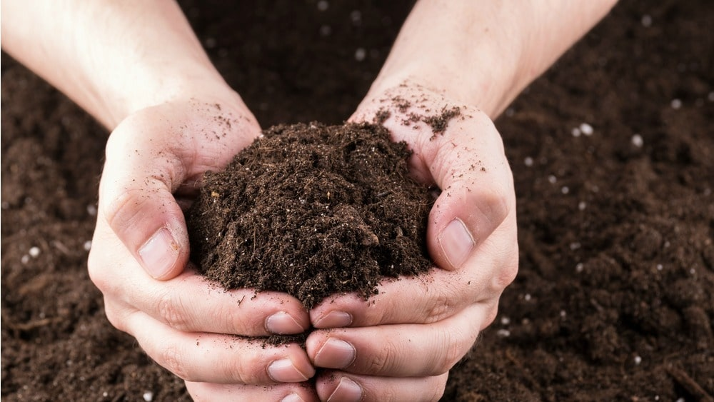 What is important for the soil when dry farming.