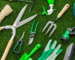29 common garden pests in australia and how to get rid of for Gardening tools melbourne